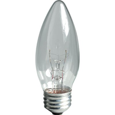 60W 120-Volt (2600K) Light Bulb (Pack of 2)