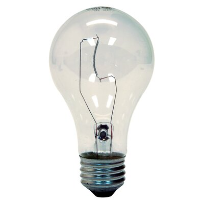 60W Light Bulb (Pack of 2)