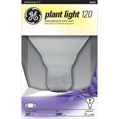 Frosted E26/Medium Light Bulb Wattage: 120W