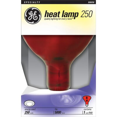 250W 120-Volt Light Bulb Finish: Red