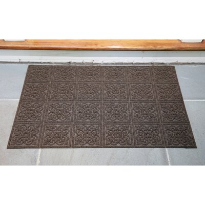 Gladiola Rectangle Rubber Back Doormat Color: Walnut, Mat Size: Rectangle 2 x 3