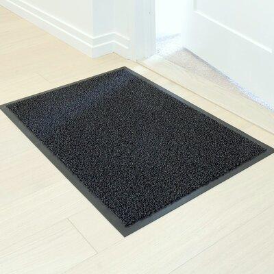 Protection Plus Entrance Doormat Color: Anthracite