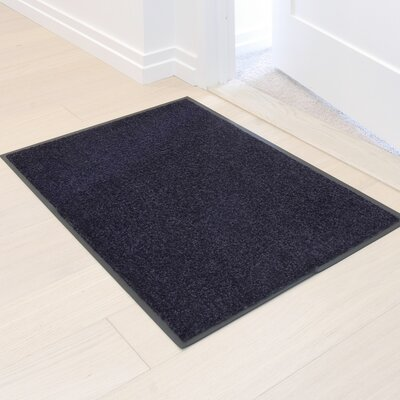 Easy Clean Entrance Doormat Color: Gray