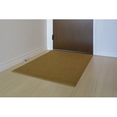Doormat Mat Size: Rectangle 3 x 4, Color: Natural
