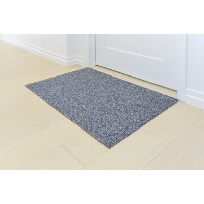 Doormat Mat Size: Rectangle 2 x 3, Color: Sterling