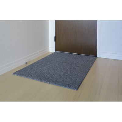 Doormat Mat Size: Rectangle 3 x 4, Color: Sterling