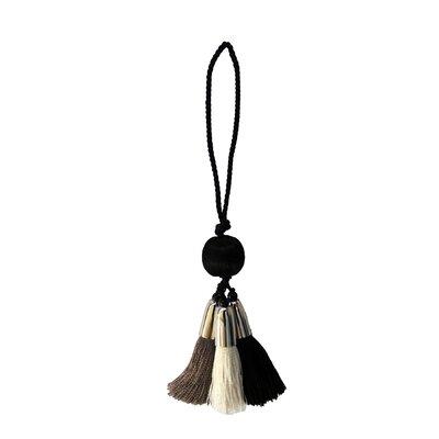 Alessandra Cushion Tassel Color: Black/Dark Gray