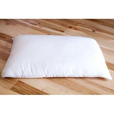 Silk Pillow Size: Standard