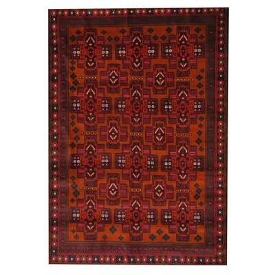 Balouchi Red Indoor/Outdoor Area Rug