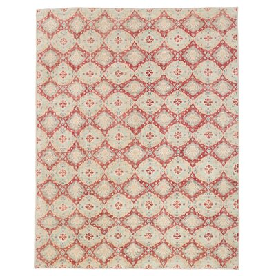 Vegetable Dye Hand-Knotted Red / Aqua Area Rug