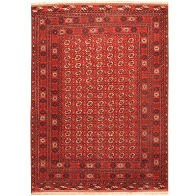 Afghan Tribal Turkoman Hand-Knotted Red/Ivory Area Rug