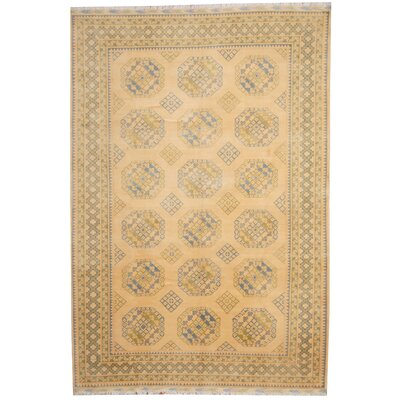 Turkoman Hand-Knotted Ivory/Light Blue Area Rug