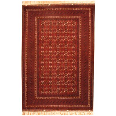 Turkoman Hand-Knotted Area Rug
