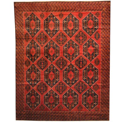 Balouchi Hand-Knotted Rust Area Rug