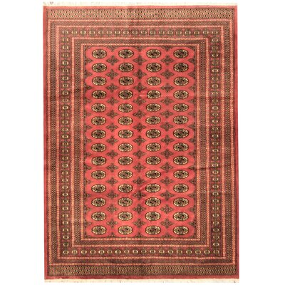Hand-Knotted Peach/Ivory Area Rug