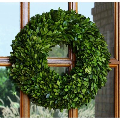 Boxwood Single Side Round Wreath Size: 16 Round