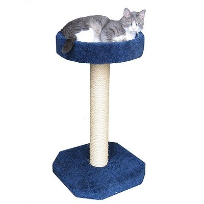 Bed Sisal Scratching Post Color: Burgundy
