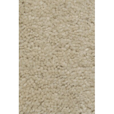 Carpet Scratching Post Carpet Color: Off-White