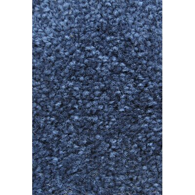 Carpet Scratching Post Carpet Color: Medium Blue
