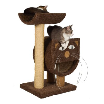37 The 2-Tier Cat Condo