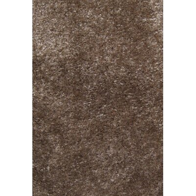 Carpet Scratching Post Carpet Color: Brown