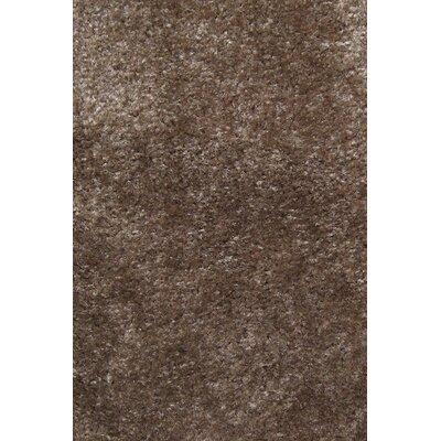 Carpet Scratching Post Carpet Color: Light Grey