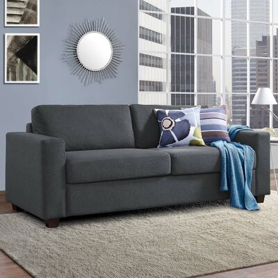 Pauley Sofa Bed Loveseat Upholstery: Gray