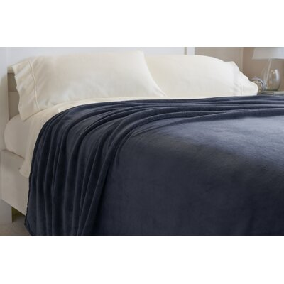 Oversized Serasoft Blanket Size: Queen, Color: Cadet Blue