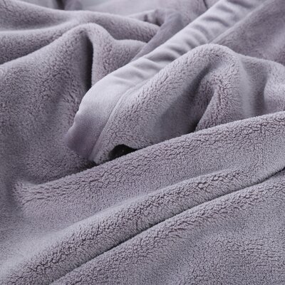Oversized Serasoft Blanket Size: Twin, Color: Frost Gray