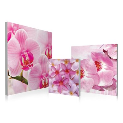 Orchids Bloom 3 Piece Photographic Print Set