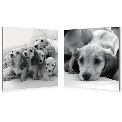 Puppies Love Modern 2 Piece Photographic Print Set