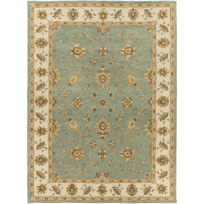 Plemmons Sage Area Rug Rug Size: Rectangle 76 x 96
