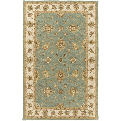 Plemmons Sage Area Rug Rug Size: Rectangle 5 x 8