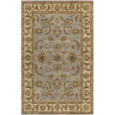 Middleton Light Blue Virginia Area Rug Rug Size: 5 x 8