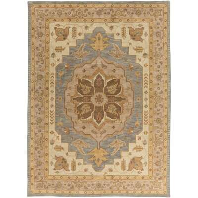 Dussault Brown Area Rug Rug Size: Rectangle 4 x 6