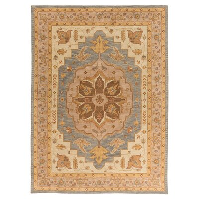 Dussault Brown Area Rug Rug Size: Rectangle 76 x 96