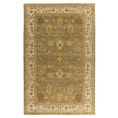 Plemmons Green Area Rug Rug Size: Rectangle 6 x 9