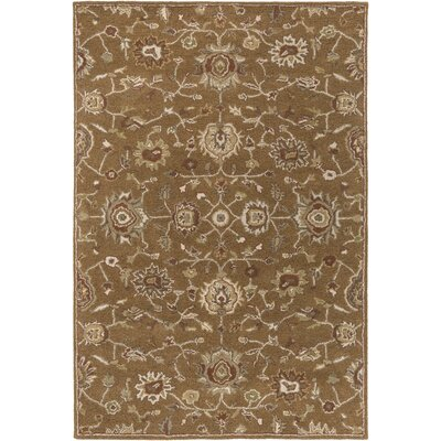 Dyal Olive Area Rug Rug Size: Rectangle 76 x 96