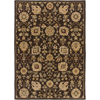 Dutil Brown Area Rug Rug Size: Rectangle 76 x 96