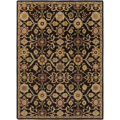 Phair Hand-Tufted Chocolate Brown Area Rug Rug Size: Rectangle 6 x 9