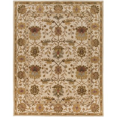Dyer Avenue Hand-Tufted Ivory Area Rug Rug Size: Rectangle 5 x 76
