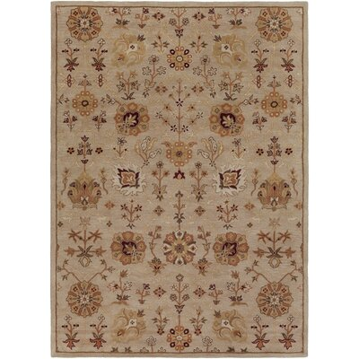 Phinney Hand-Tufted Beige Area Rug Rug Size: Rectangle 76 x 96