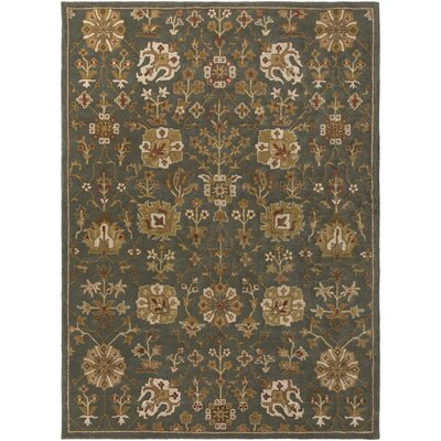 Phinney Hand-Tufted Gray Area Rug Rug Size: Rectangle 76 x 96