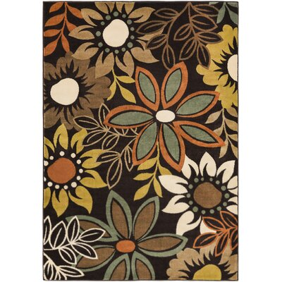 Muhammad Brown Area Rug Rug Size: Rectangle 53 x 73