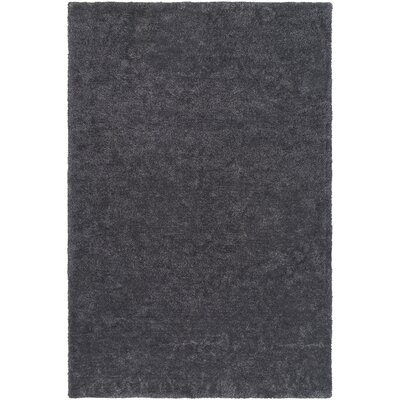 Eckman Onyx Area Rug Rug Size: Rectangle 5 x 76