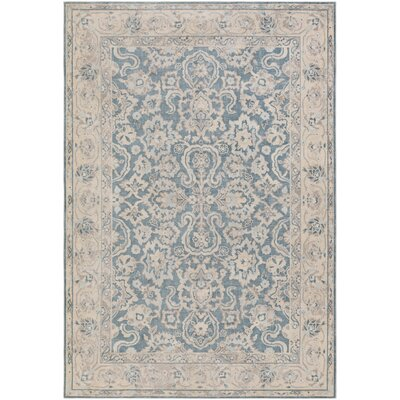 Kessler Blue Area Rug Rug Size: Rectangle 53 x 73