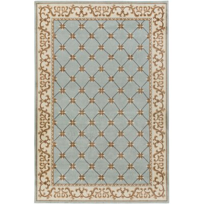 Pflugerville Light Blue Area Rug Rug Size: Rectangle 4' x 6'