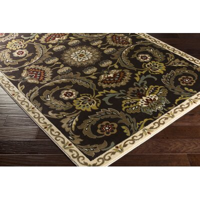 Dunnigan Brown Area Rug Rug Size: Rectangle 53 x 73