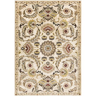Dunnigan Beige Area Rug Rug Size: Rectangle 2 x 3