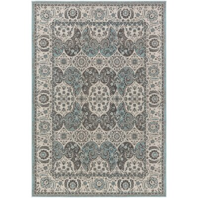 Eberly Turquoise/Gray Area Rug Rug Size: Rectangle 5'3